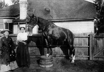 An elderly Mattie Silks (far left, in hat) poses with one of the racehorses she acquired for her stable.