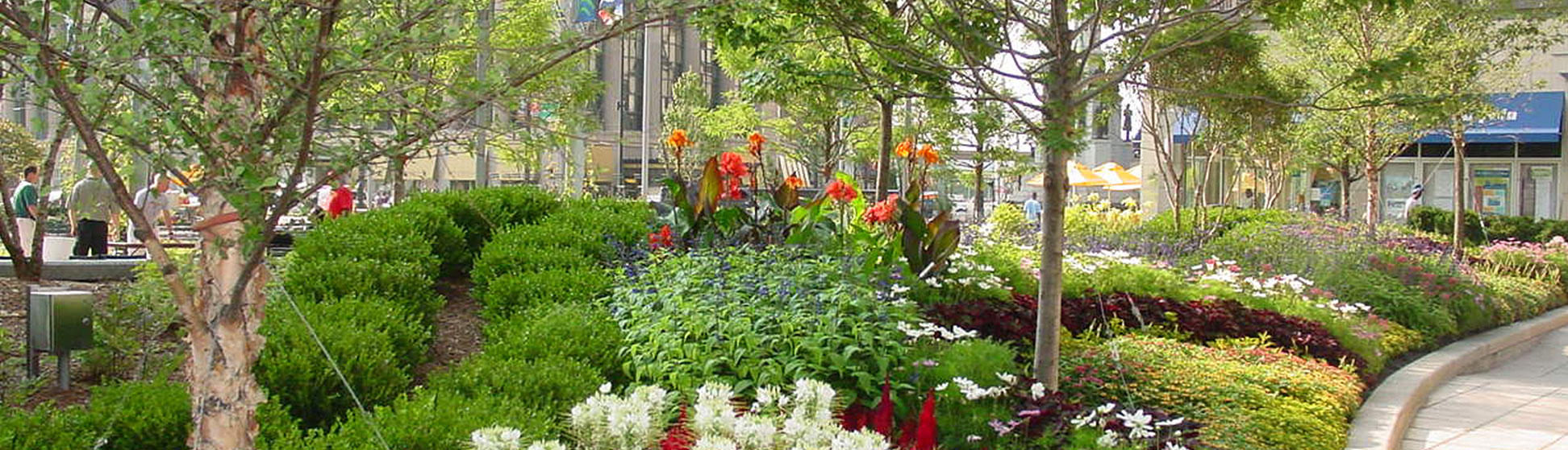 Spring plantings in the park (image from Campus Martius Park)