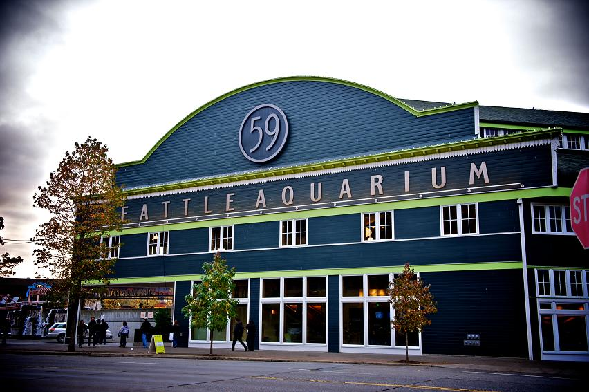 Seattle Aquarium (image from Seattlewatching)