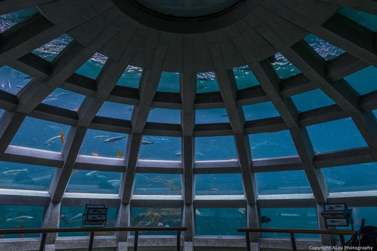The Underwater Dome (image from Trip Advisor)