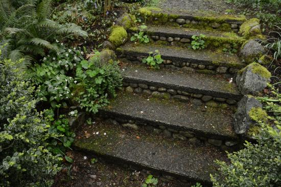 Olmsted stairway (image from Trip Advisor)