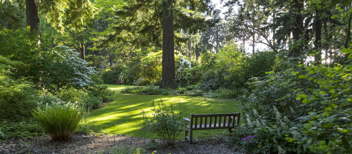 Another view of the summer gardens (image from Dunn Gardens)