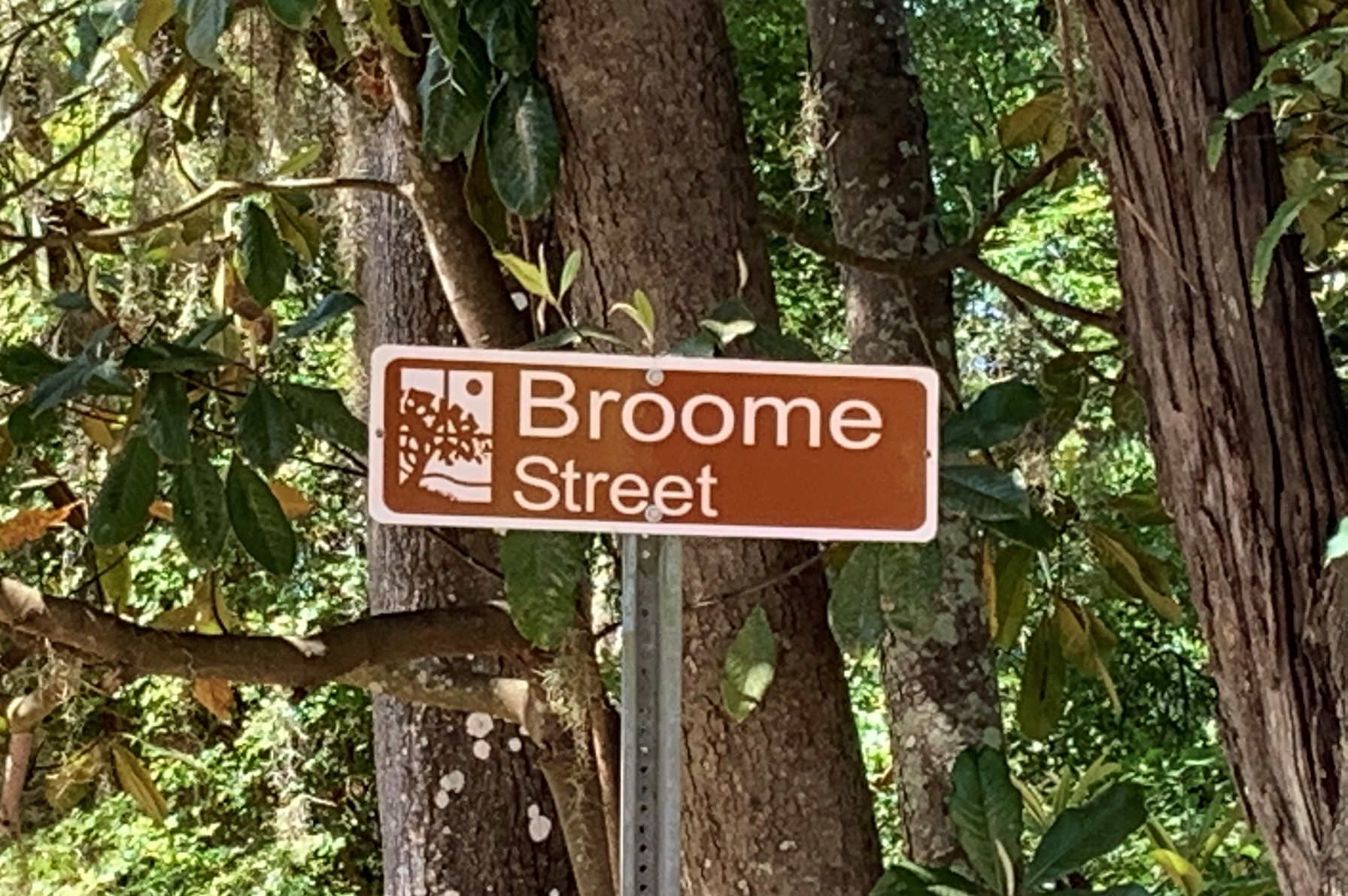 This virtual tour of the city offers information about the connection between streets and community names and antebellum leaders like James E. Broome, the third governor of Florida who owned a plantation and enslaved 31 people.