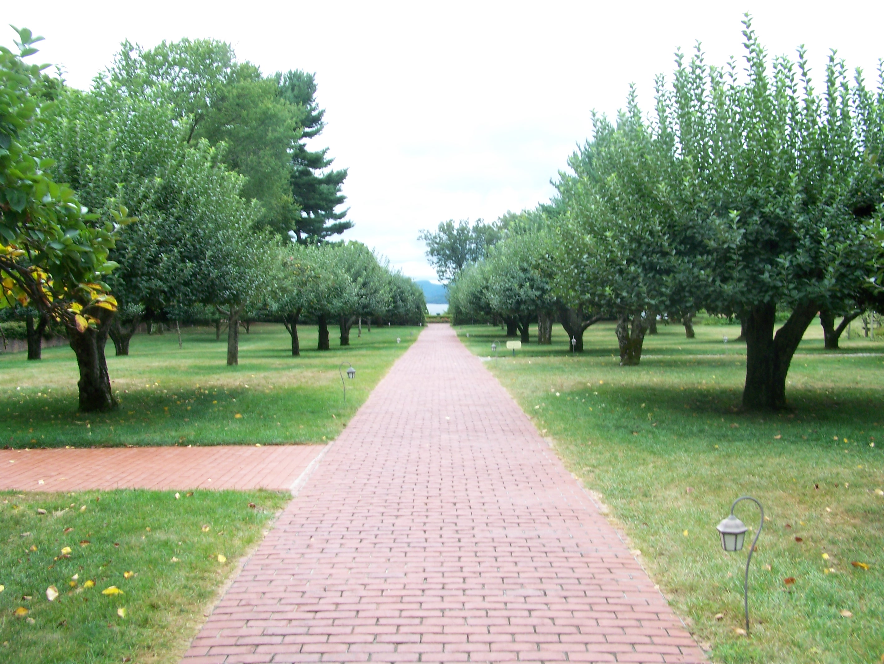 Red Brick Path through the Apple Orchard