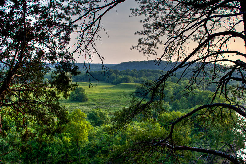 View from Mace Bluff