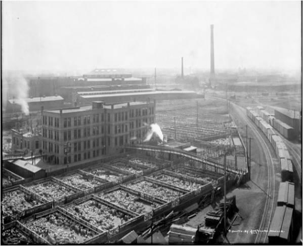 National Western Show Livestock Exchange, ca. 1900 (historicdenver.org)