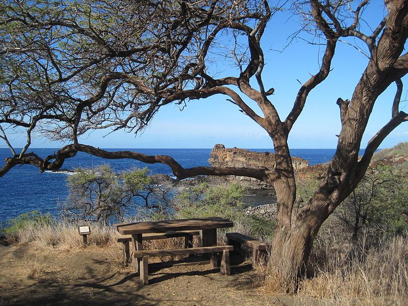 The location where King Kamehameha I's house once stood.