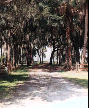 Fort Lane Trail