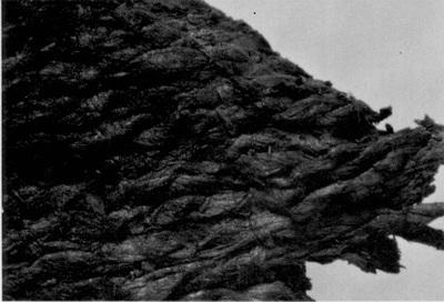 Windover Textile