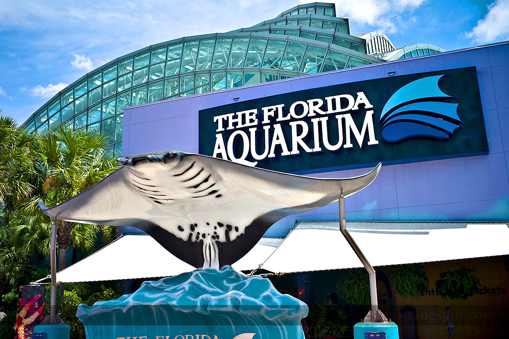 Florida Aquarium Entrance