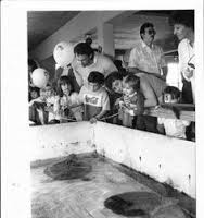The Marine Science Center stingray exhibit before the incorporation of the Florida Aquarium