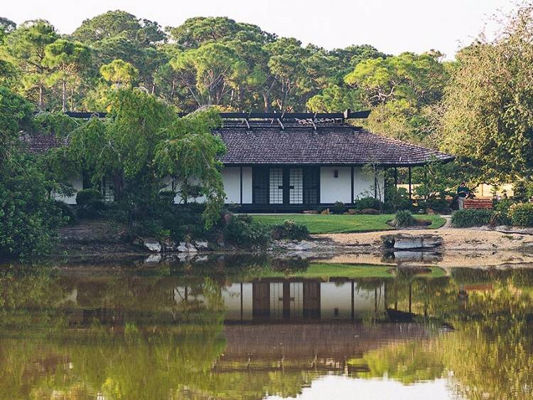 Morikami Museum and Japanese Gardens was established in 1977.