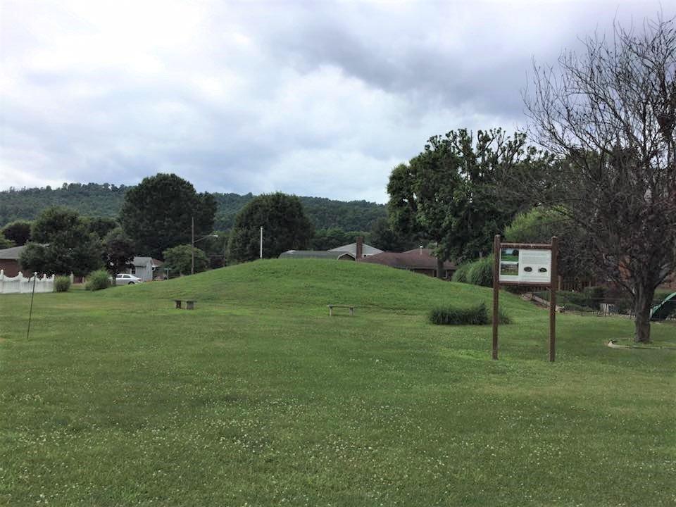 Prehistoric mound at the Cockayne Farmstead.