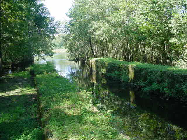 Remains of the canal