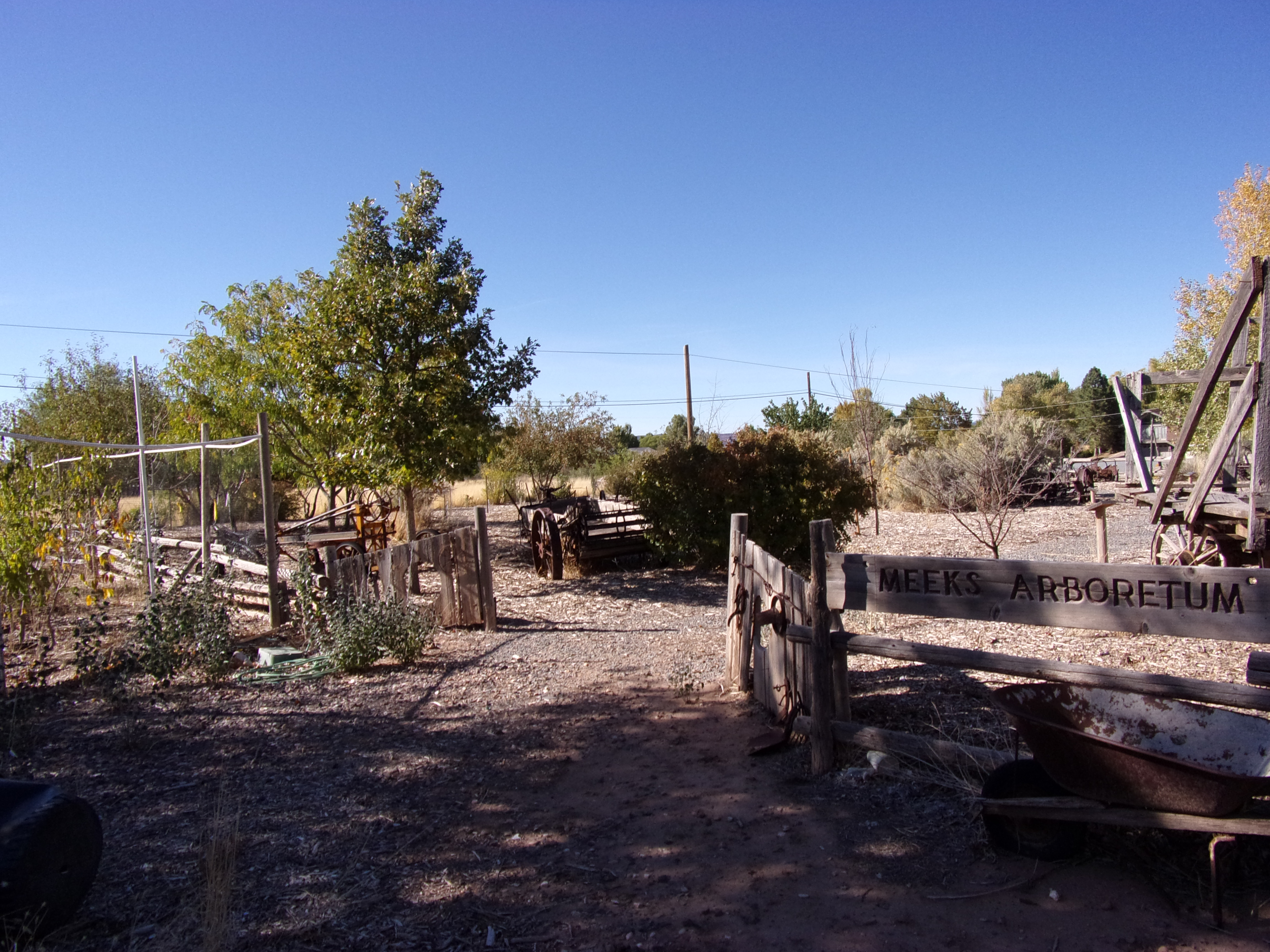 Meeks' Arboretum