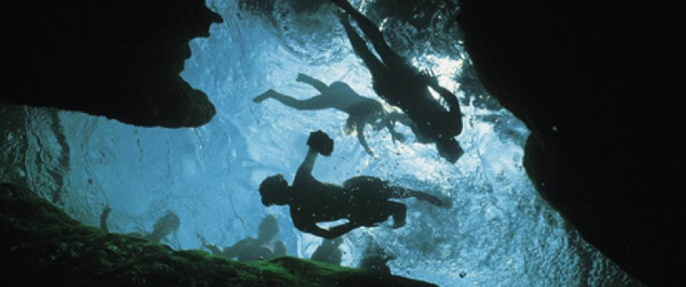Underwater caves are a core attraction at the park; dive hundreds of feet under clear water.