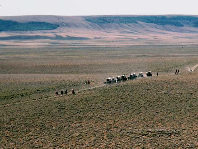 Somewhere around 400,000 emigrants crossed South Pass in search for Oregon, California or Utah's valley of the Great Salt Lake.  They brought along their wagons of supplies and their cattle in search for a new start.