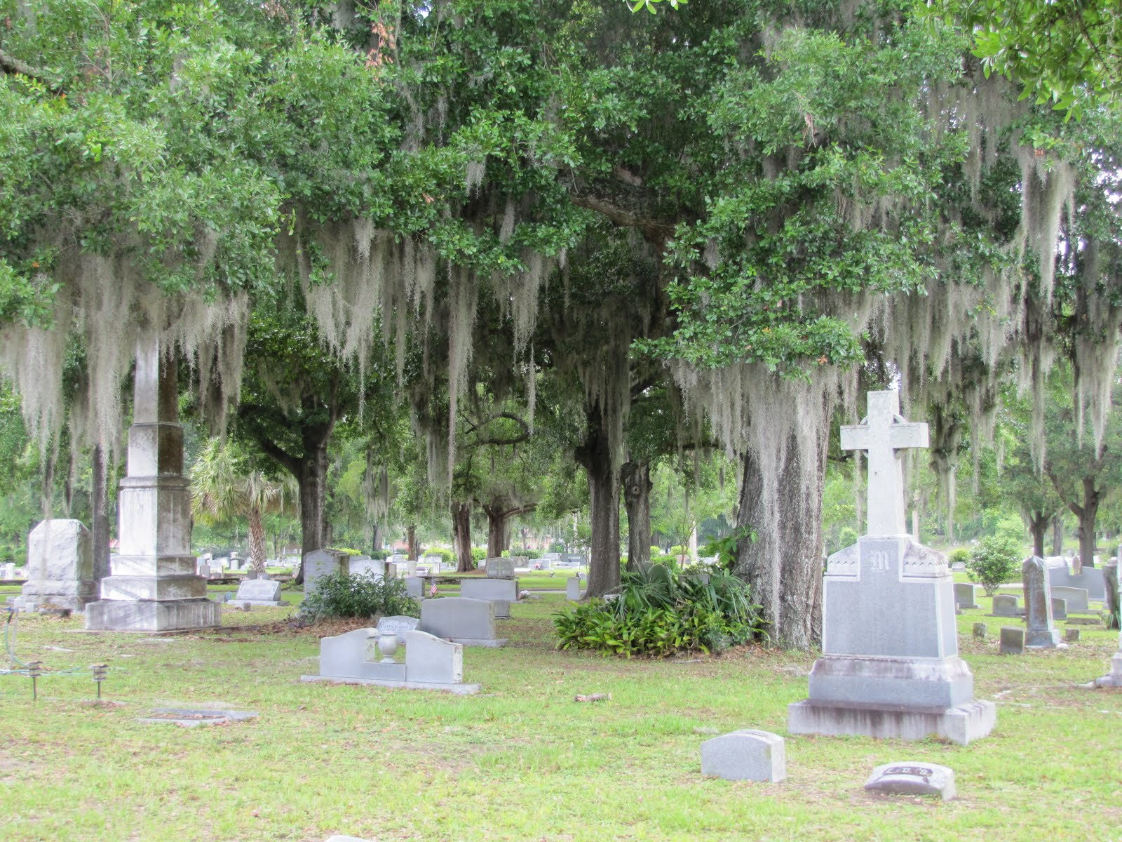 Some of the graves at Greenwood Cemetery.