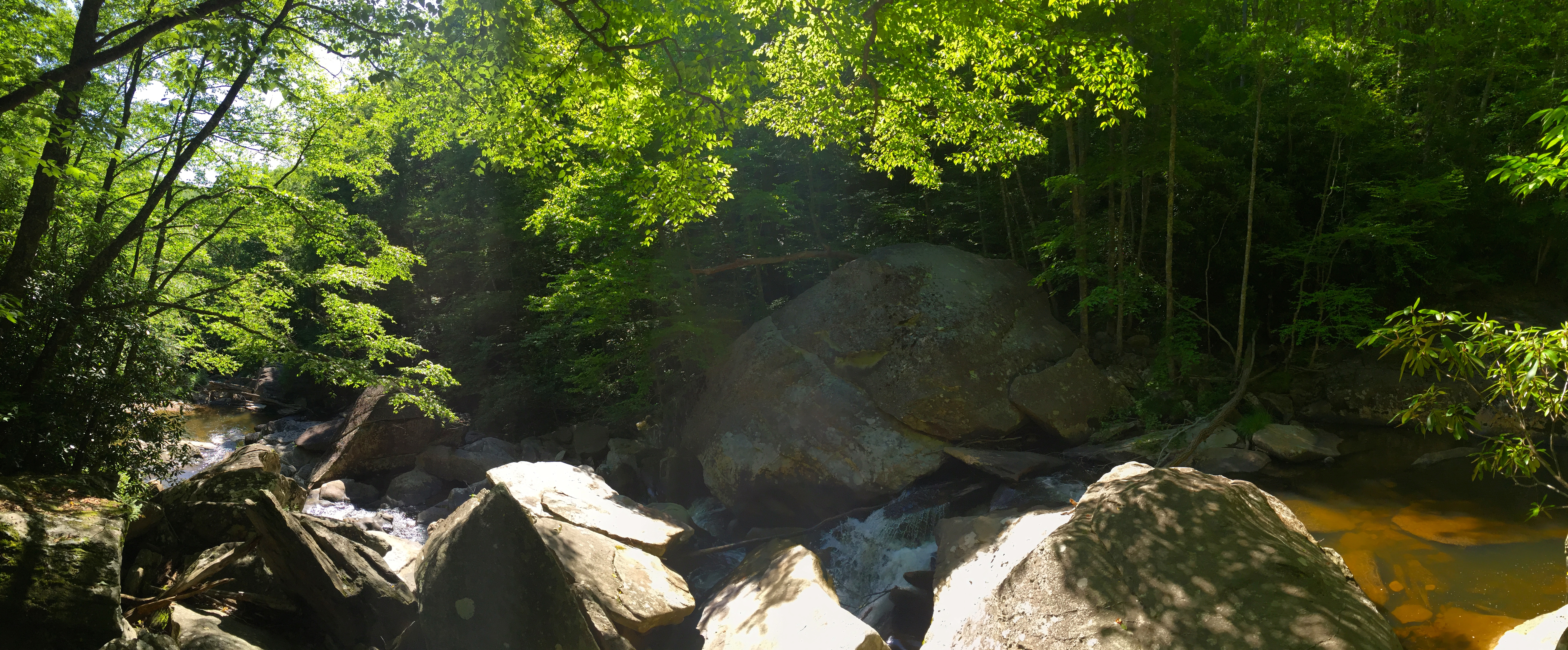 A view of the Boone Fork around Mile Marker 2 of the Boone Fork Trail, a five-mile loop starting from the Julian Price Memorial Park Picnic Area.