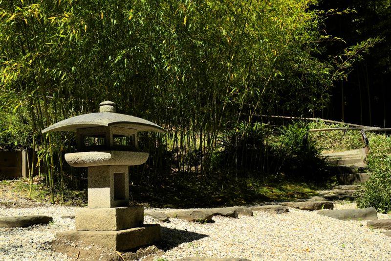 Zen Garden (image from flowerpictures.net)