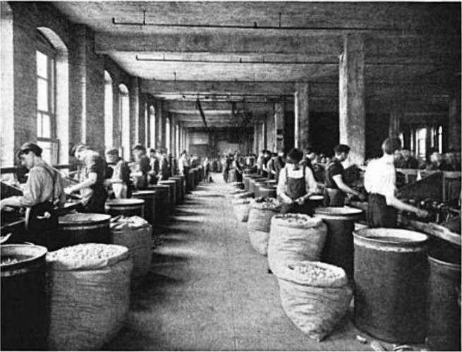 Inside of the Cork Factory: Busy with the Corks