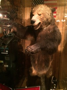 Grizzly bear mount inside of the Million Dollar Cowboy