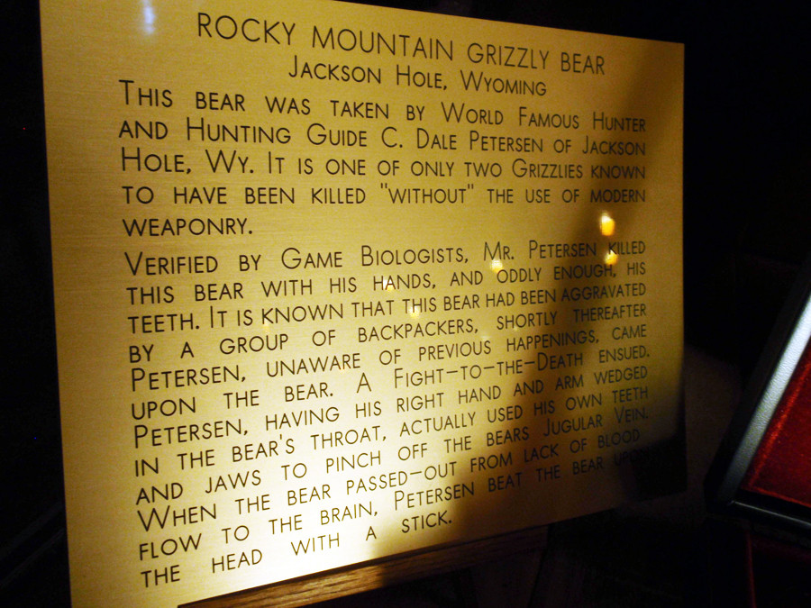 Plaque underneath the Million Dollar Cowboy grizzly bear mount