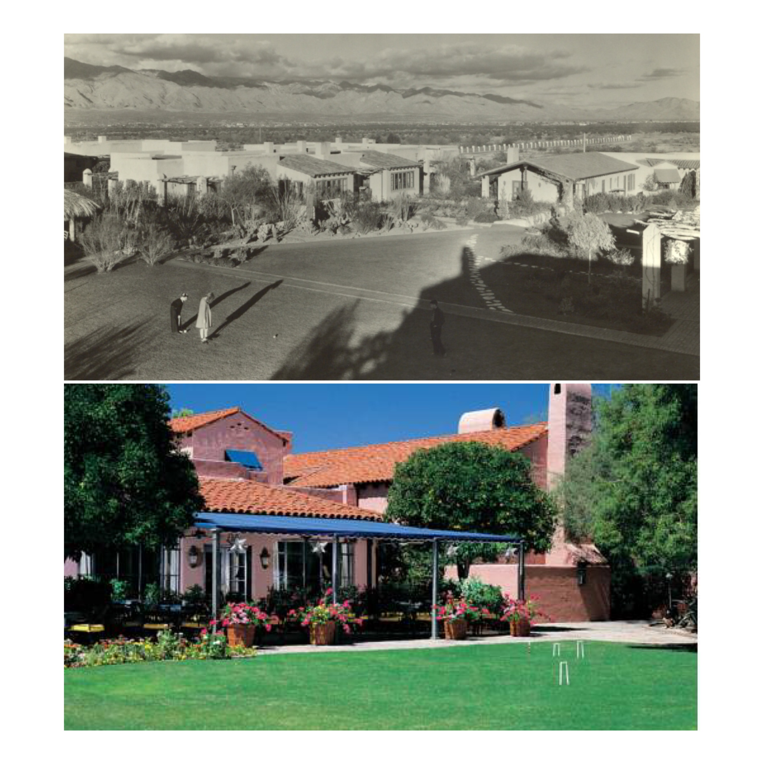 The croquet lawn, then and now.