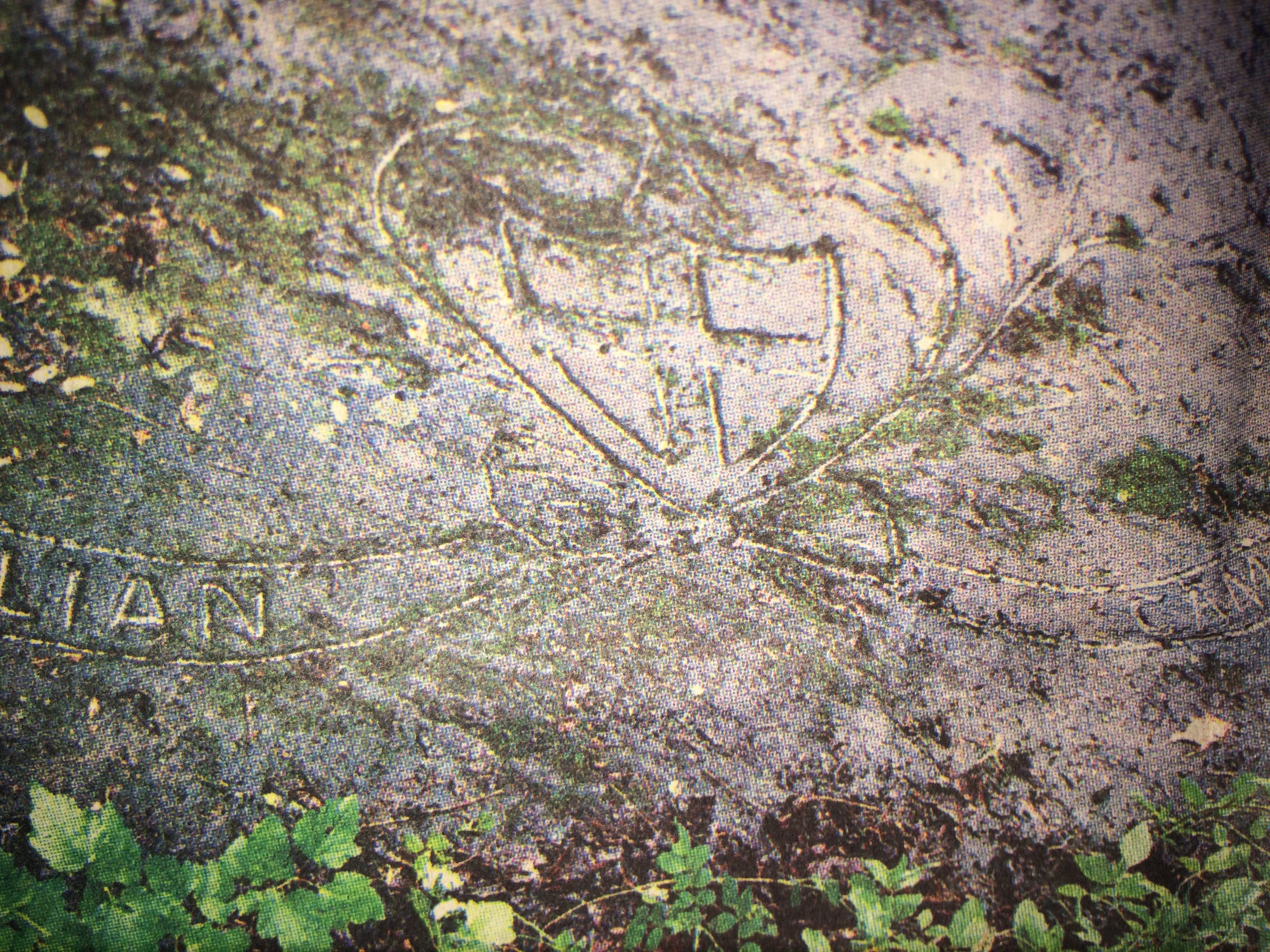 Here the shield (family crest) can be seen before the moss grew over it. (via Rick Steelhammer from the Gazette Mail June 3, 2007)