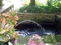 Inside of the Botanical Garden