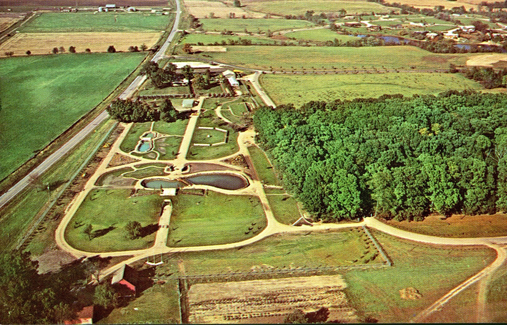 Aerial Photo of Mabery Gelvin Botanical Garden (c.1974)
