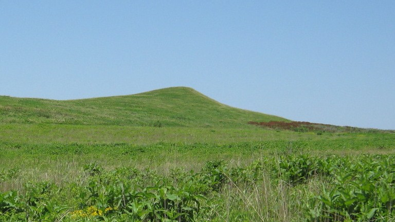 A closer view of the mound