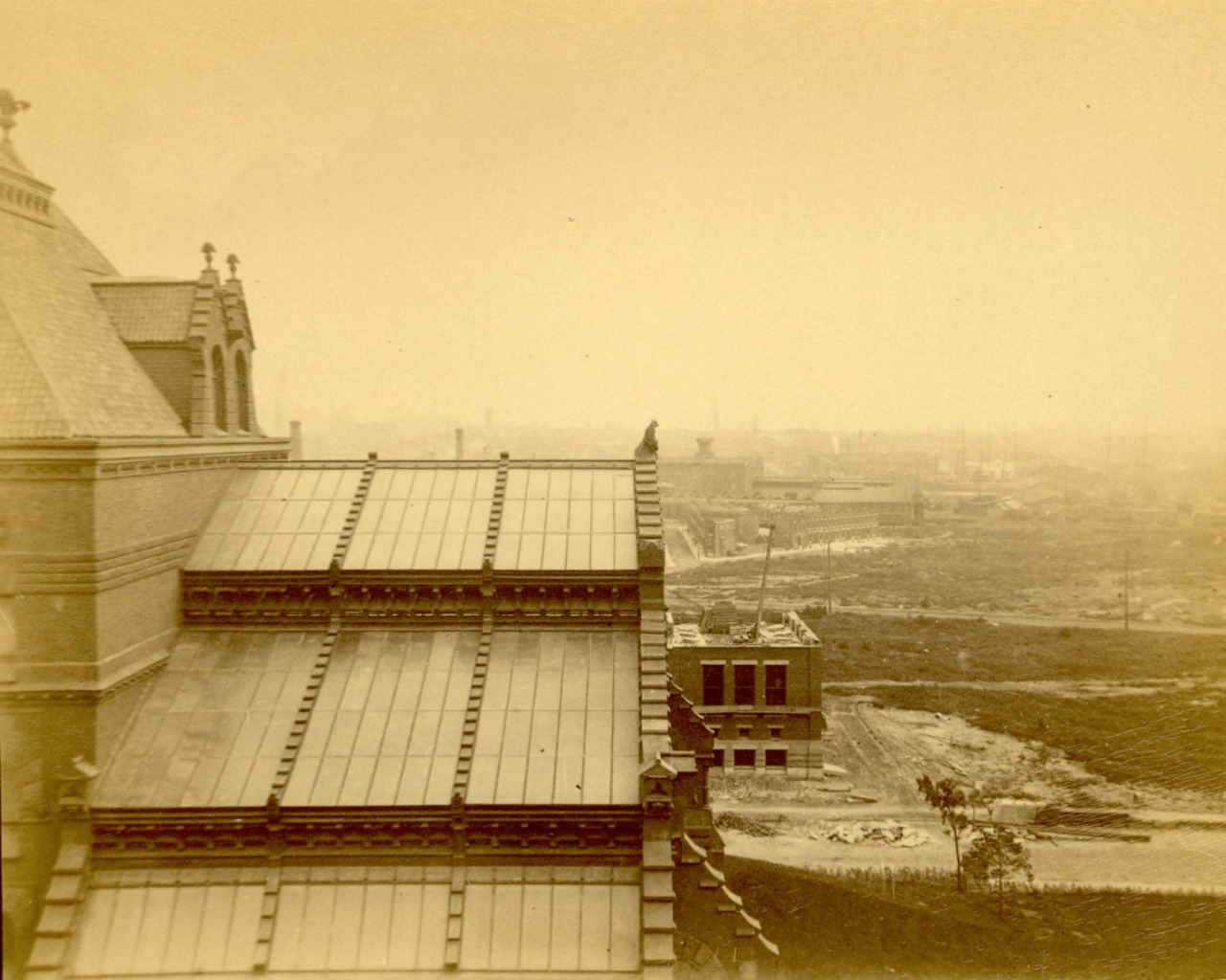 A vintage photo of the glass-roofed stacks section prior to the addition of the Duhring Wing in 1916.
