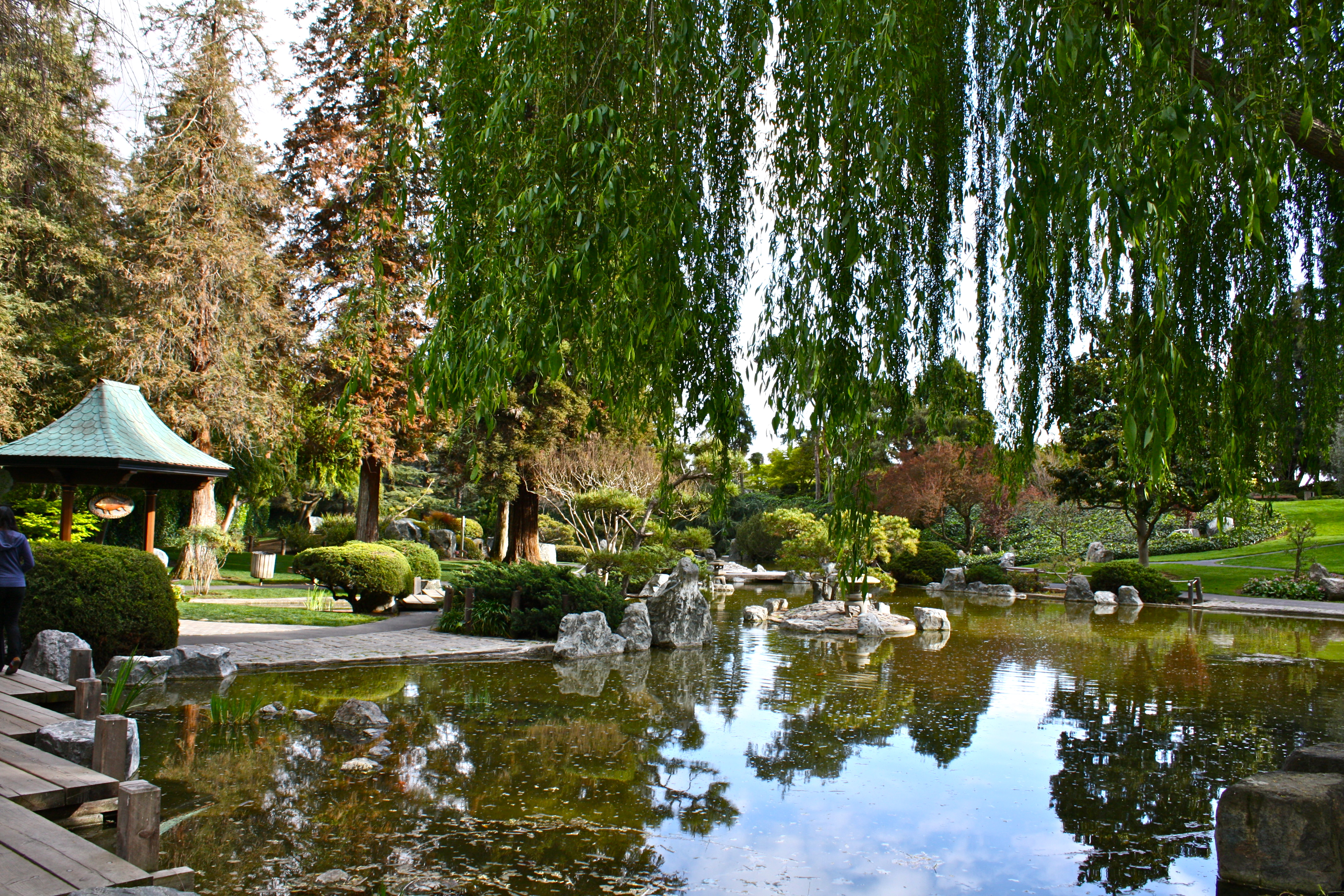 The lower pond in the Japanese Friendship Garden in Kelley Park (image from Expedia)