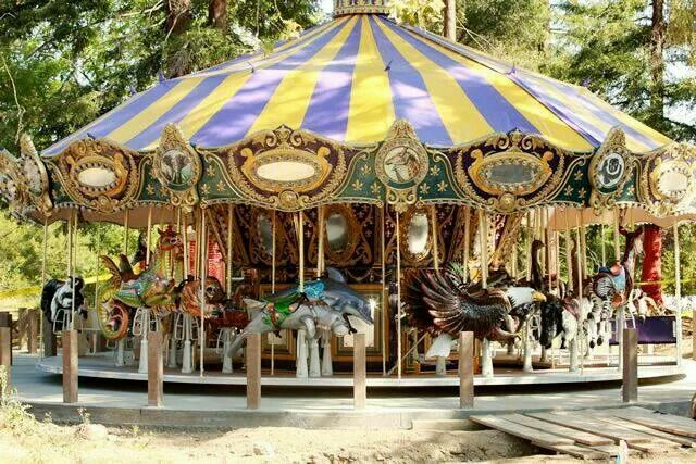 Carousel at Happy Hollow with endangered species instead of horses (image from Pinterest)