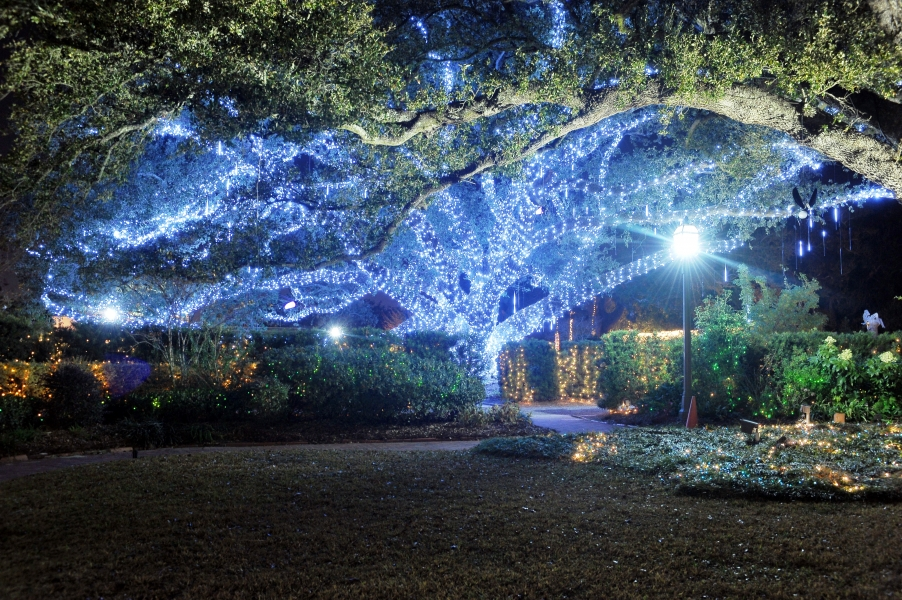 Every holiday season, City Park hosts its famous Celebration in the Oaks light show.