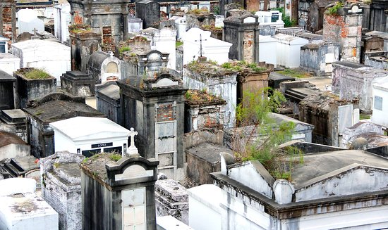 "From this vantage point it's easy to understand why New Orleans' cemeteries are referred to as ""cities of the dead."""