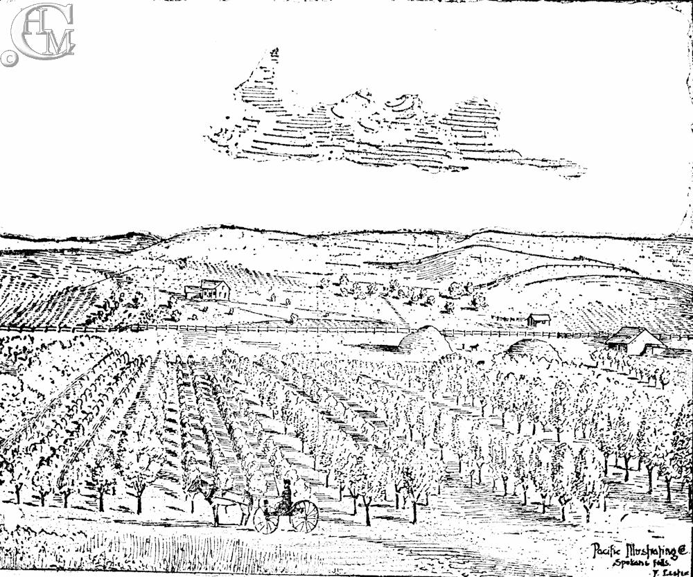 Thomas and Lois McFeron's Fruit Farm