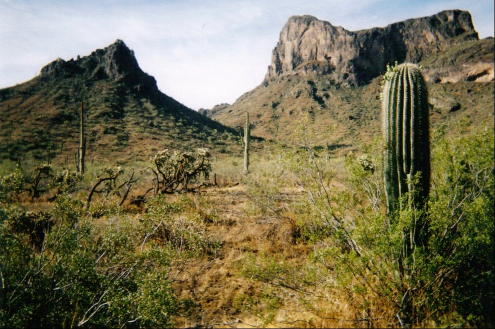 View of Picacho Pass