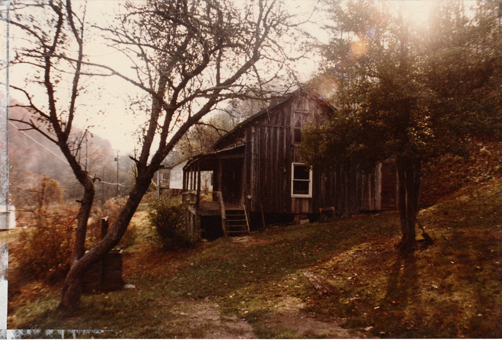 Historic Photograph of the Cabin in Butcher Holler