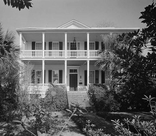 Plant, Building, Property, Window