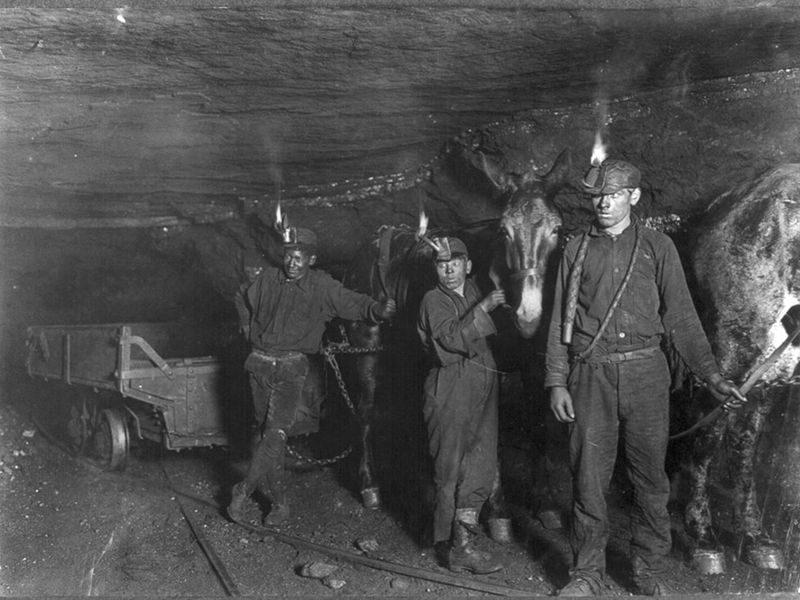 Child Miners with Mule in Gary, West Virginia (1908)