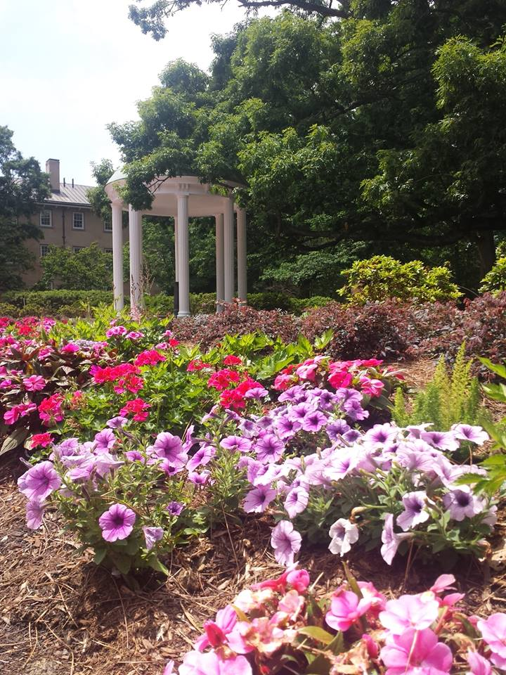 Today, the Old Well is surrounded by trees, flowers, and brick paths (source: Burt Westermeier)