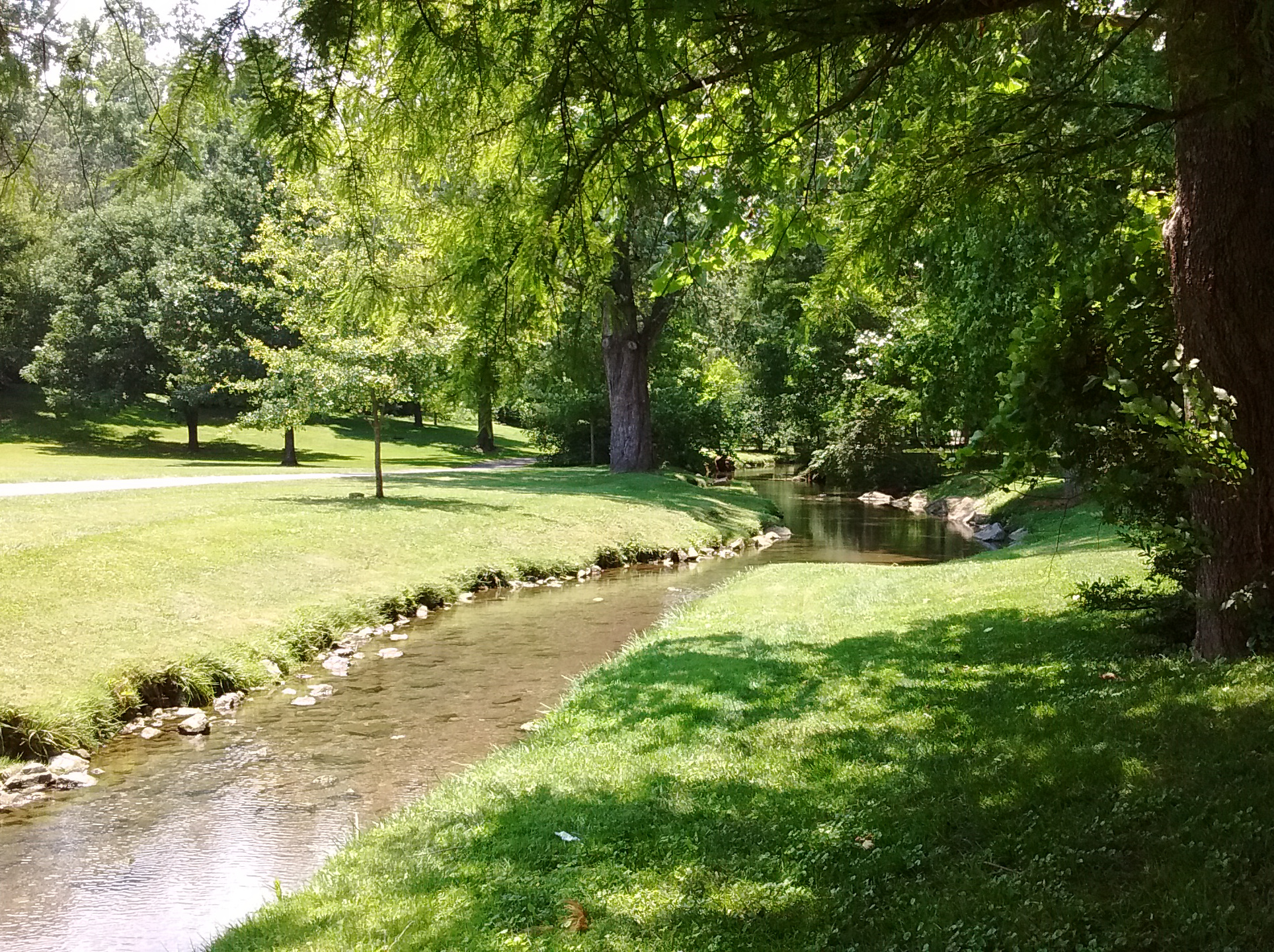 Stroubles Creek just upstream of the Virginia Tech Duck Pond in Blacksburg, Virginia; image by Vejlenser - Own work, CC BY-SA 4.0, https://commons.wikimedia.org/w/index.php?curid=49828867