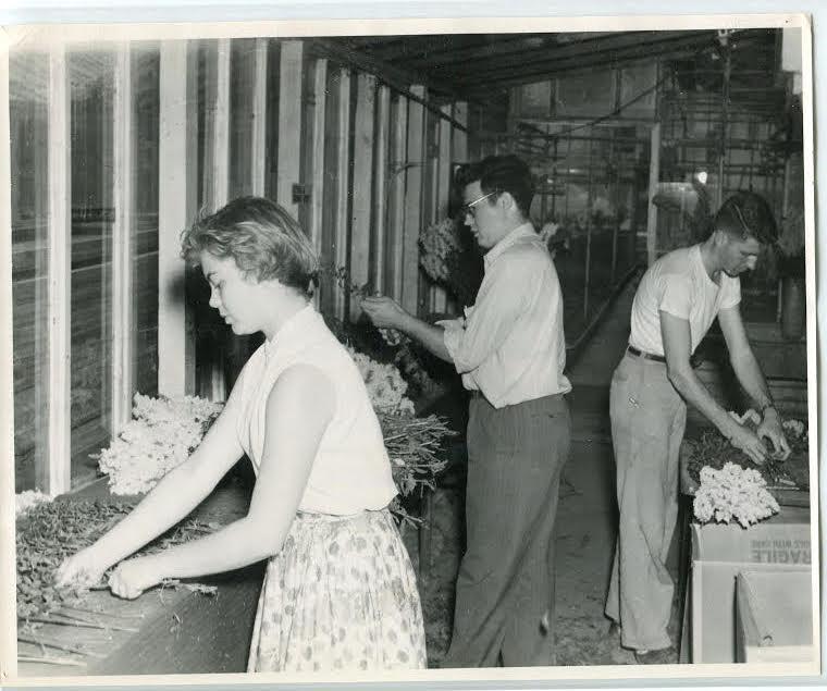 Students preparing for the flower market.