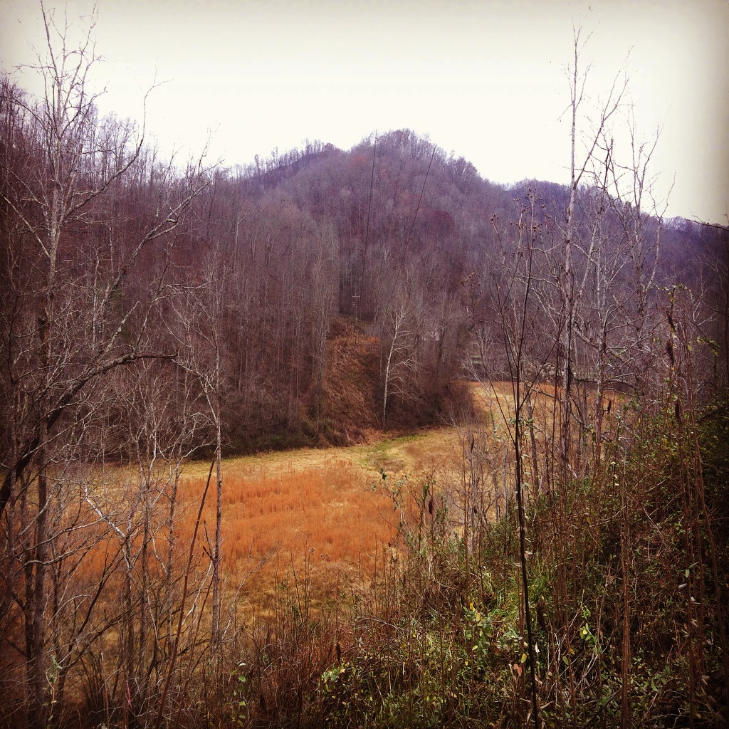 Billy Hall property at the mouth of Rockhouse Fork of Harts Creek. Date: December 3, 2016. Photo by Brandon Kirk.