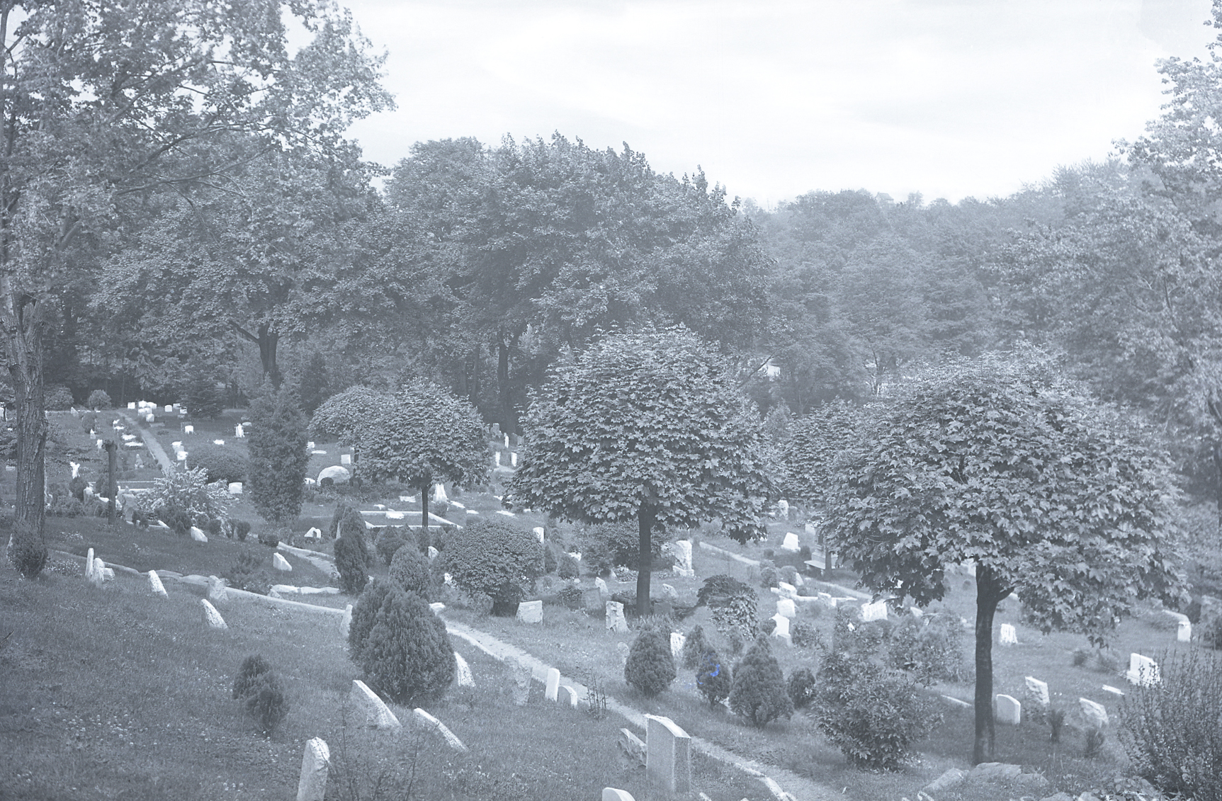 Hartsdale Pet Cemetery in the early 20th century.