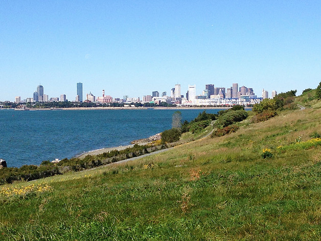 View of the City of Boston from the island, from: 