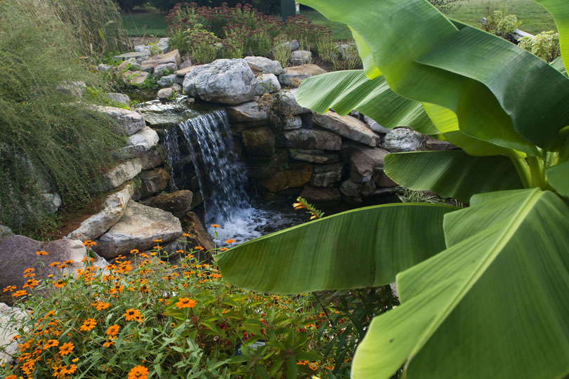 Fall foliage and waterfall at the Hahn Horticulture Garden; image by Kim Peterson - Virginia Tech Office of Visual and Broadcast Communications, GFDL, https://commons.wikimedia.org/w/index.php?curid=5864784