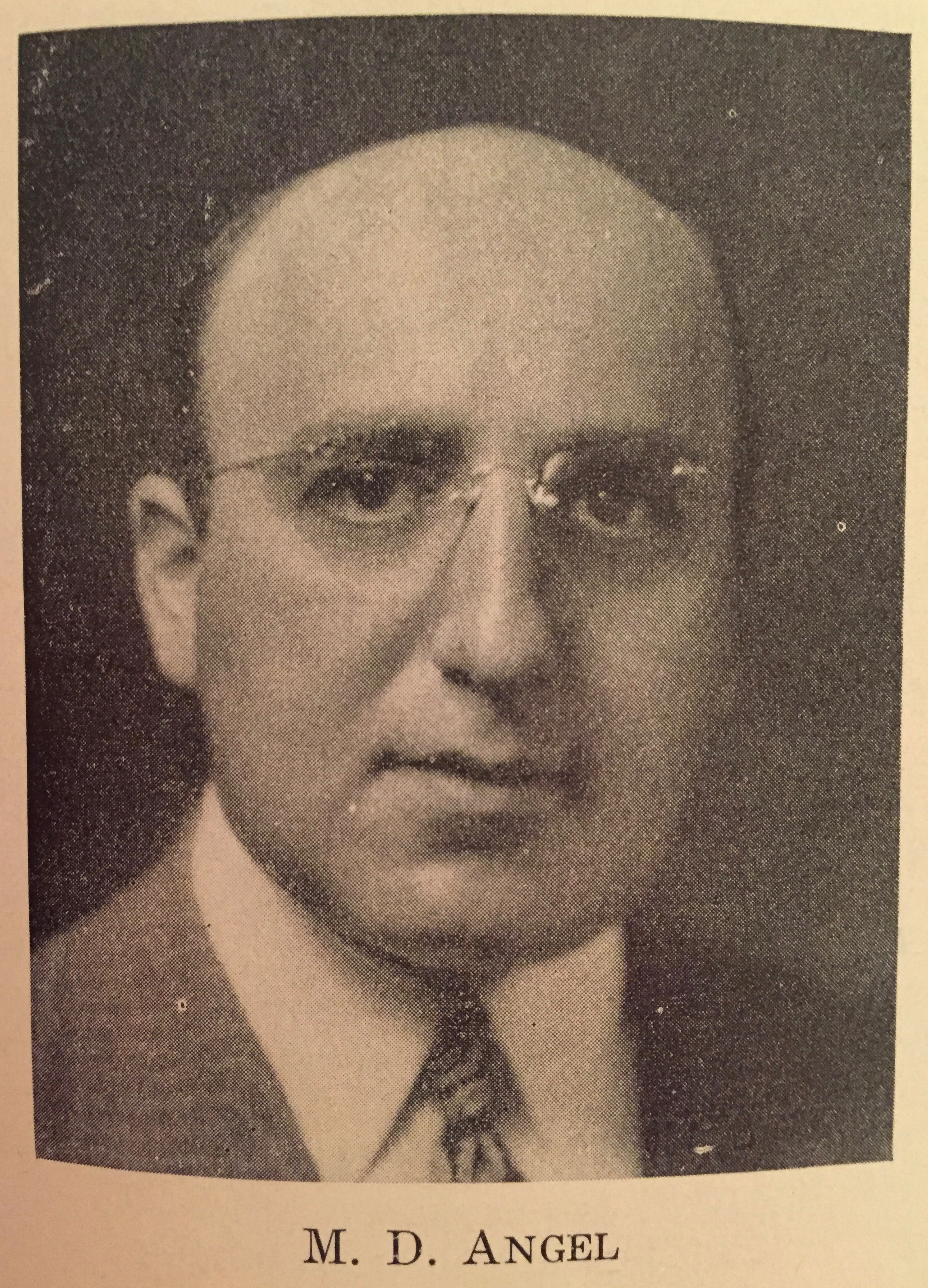 Max D. Angel